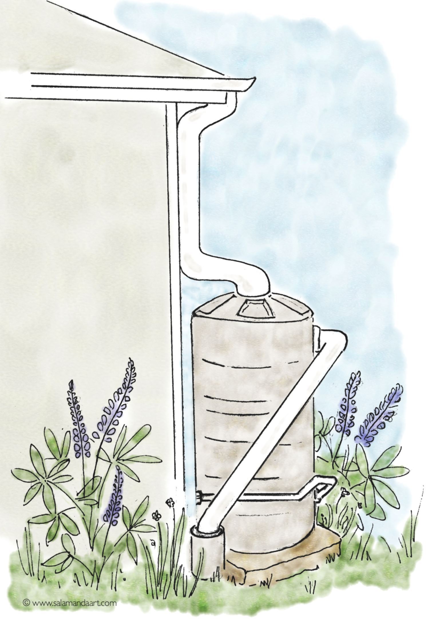rain barrel drawing